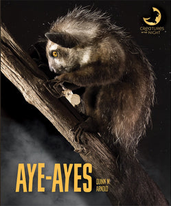 Creatures of the Night: Aye-ayes