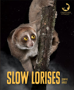 Creatures of the Night: Slow Lorises