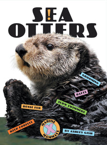 X-Books: Marine Mammals: Sea Otters