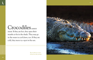 Amazing Animals: Crocodiles