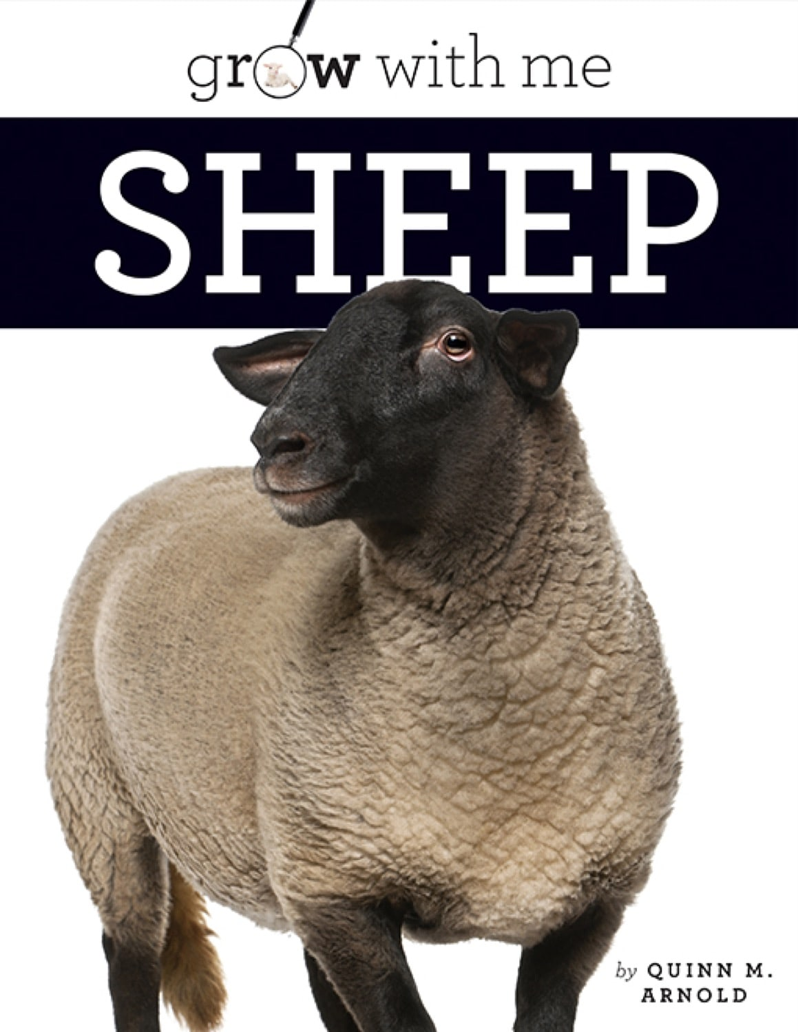 Grow with Me: Sheep