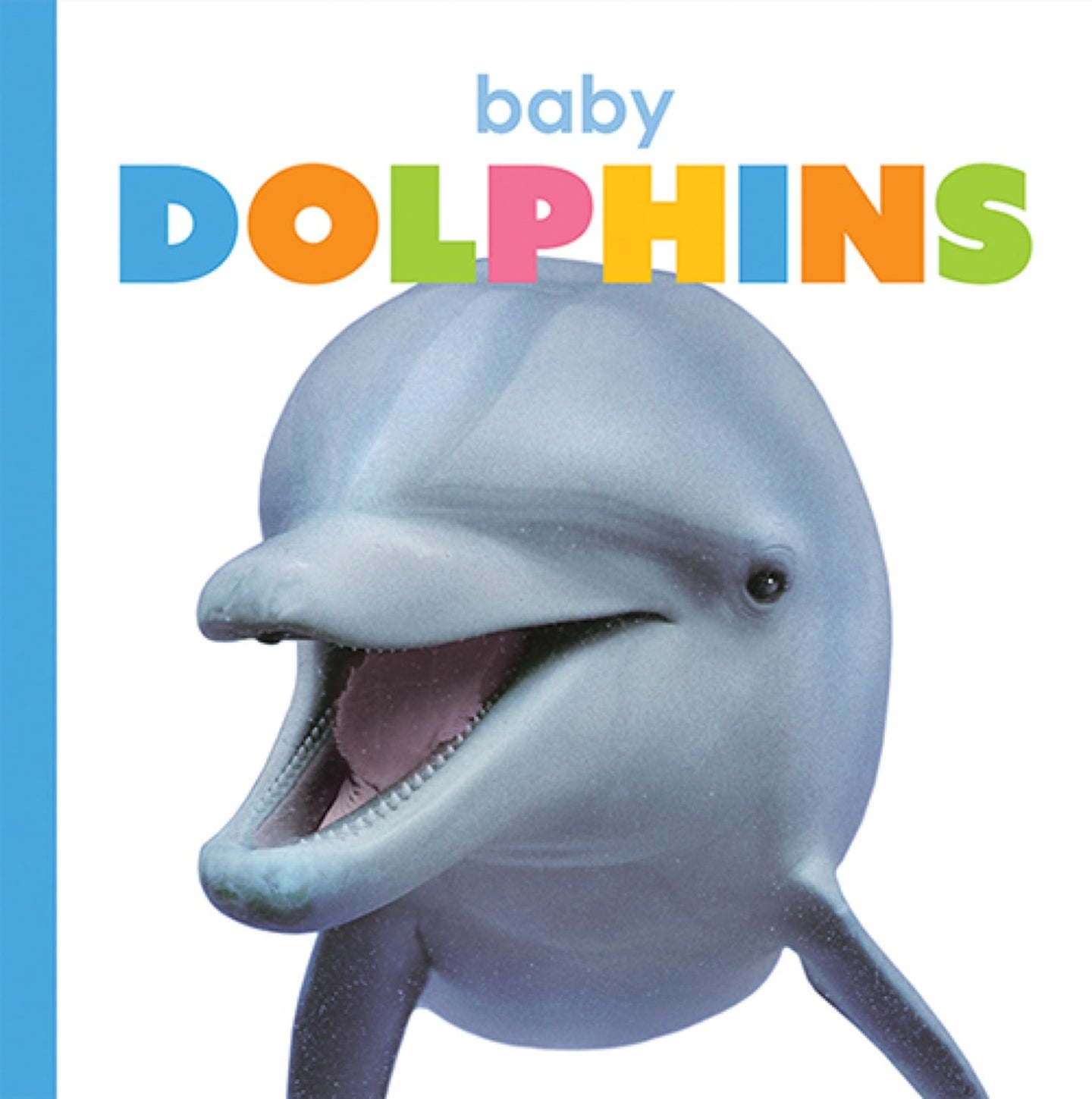 Starting Out: Baby Dolphins