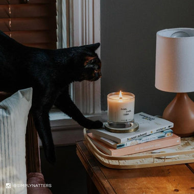 Spoken Flames candle on dresser near lamp with a black cat