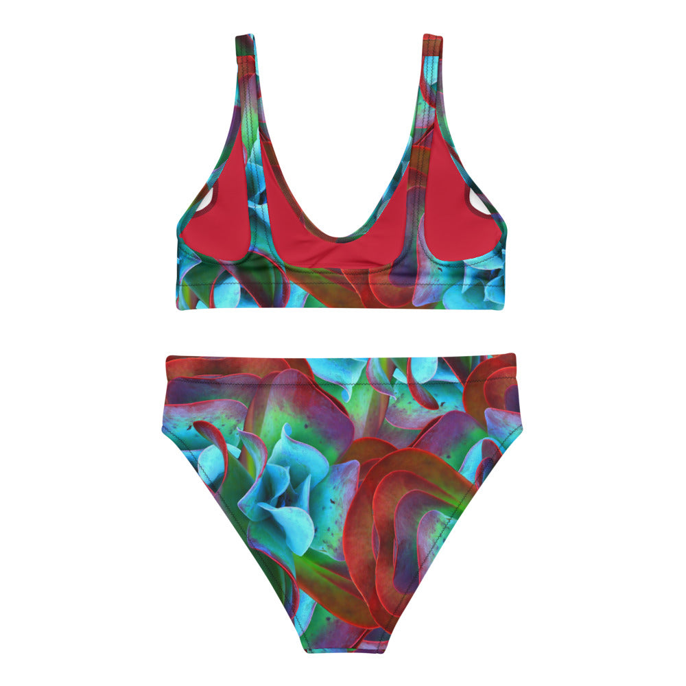 Recycled Polyester High-waisted Bikini in Red Flora