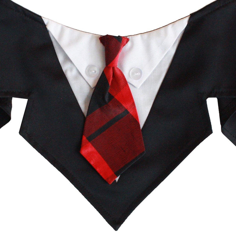 Beethoven Satin Black/Red Neck Tie Bandana