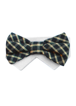 Saturday- Black, Yellow/Ivory Bow Tie