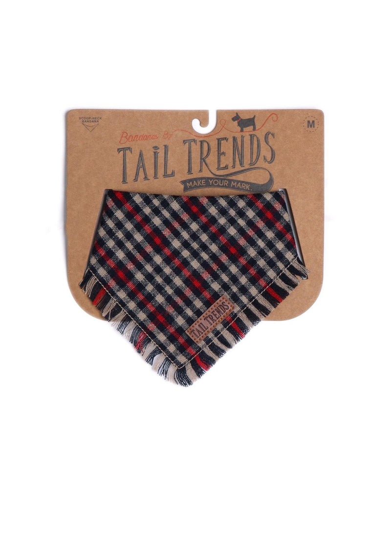 Red Plaid Frayed