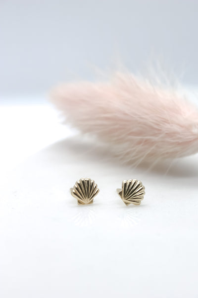 Seashell Mini Studs