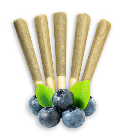 CBD Flower Pre Rolls Terpene Enhanced blueberry