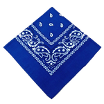 Bandana Homme<br> Bleu - Bandana District