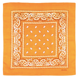 Bandana Orange Lantana - Bandana District
