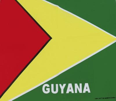 Bandana Drapeau <br> Guyana - Bandana District