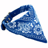 Collier Bandana Chien<br> Bleu - Bandana District