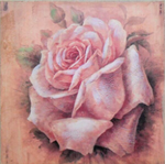 Hand finished Single Rose (3) 202x205x15mm