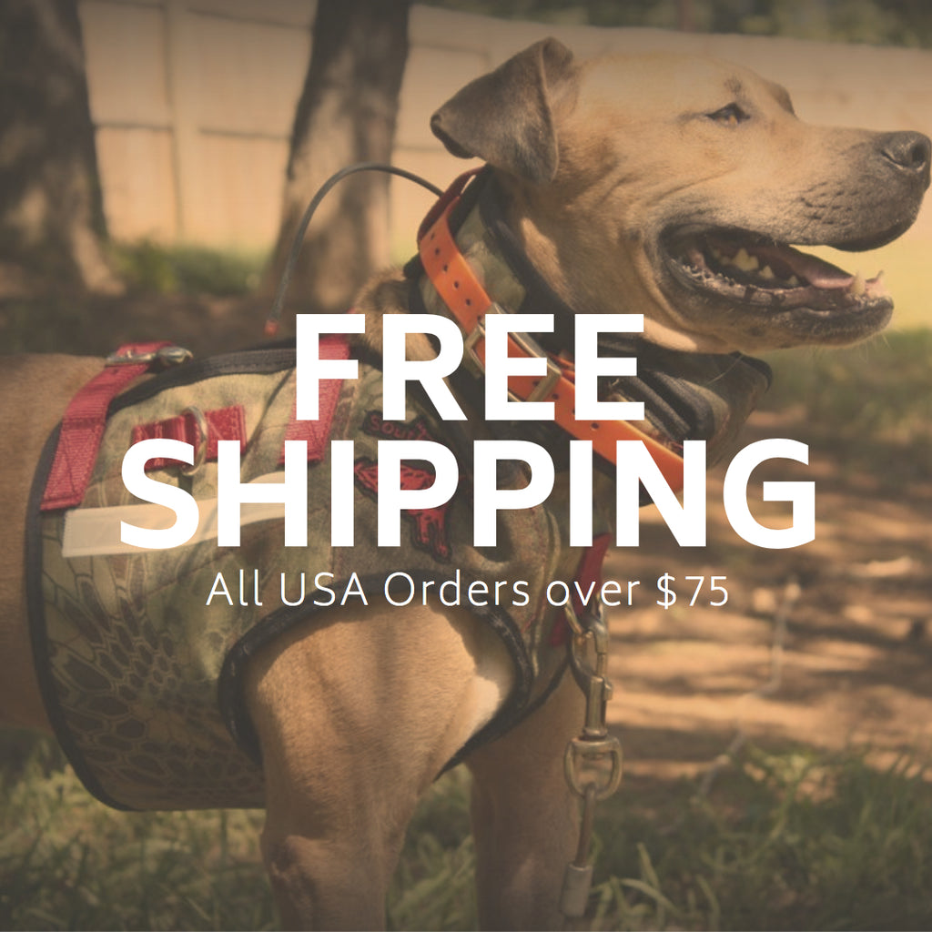 Coronavirus Limited Time Free Shipping