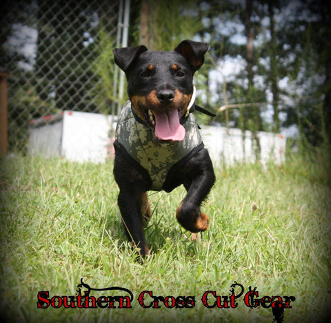 Southern Cross Terrier Vest - Southern Cross Cut Gear