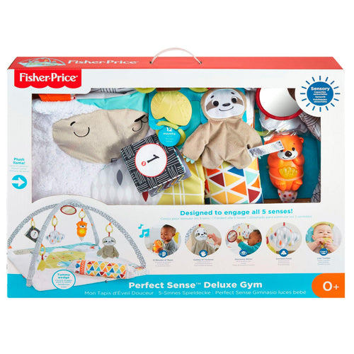 Fisher price activity gym - AllesKids4Toys