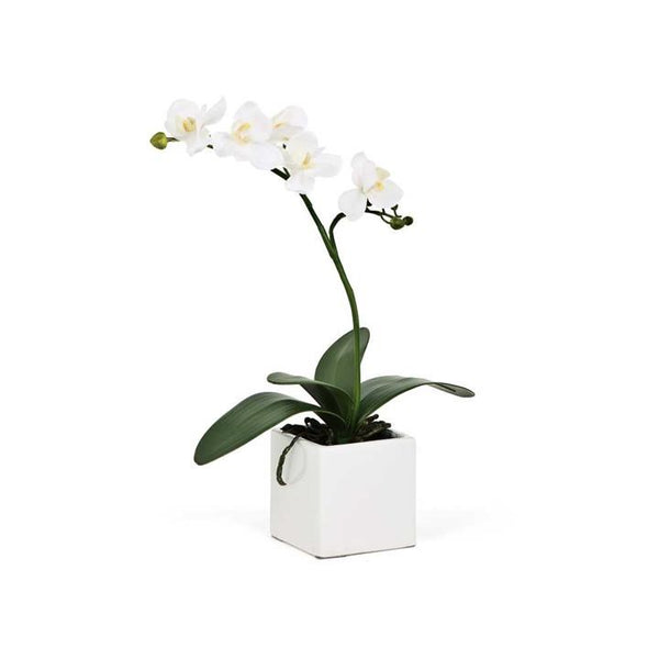 "Orchid Potted Faux Single Stem 16"" - White"