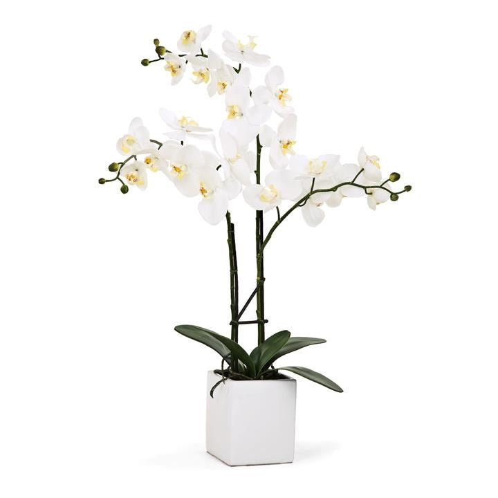 "Orchid Potted Faux Triple Stem 23"" - White"
