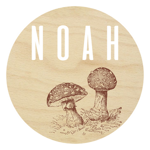 Laser Engraved and 3D Toadstool Name Sign