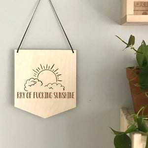 Ray of F Sunshine Laser Engraved Pennant
