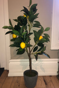 FAUX LEMON TREE IN CEMENT POT