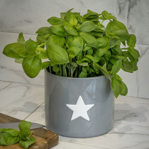 Grey Flower Pot with White Star Homeware Retreat