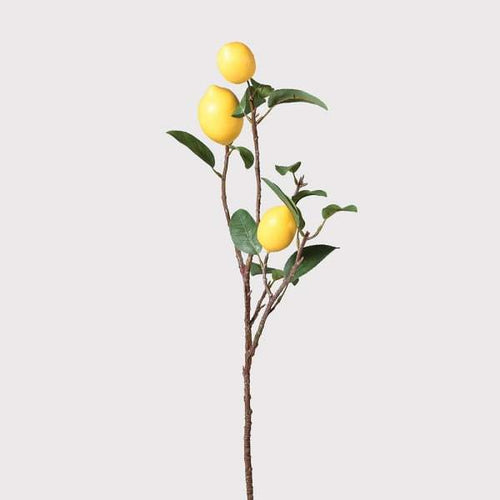 Lemon Spray with Leaves Homeware Coach House