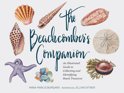 The Beachcomber's Companion Book Gift Abrahms and Chronicle