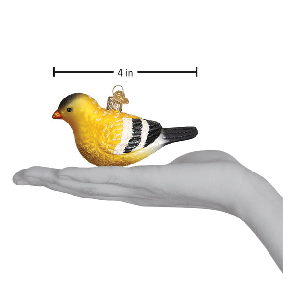 American Goldfinch Ornament Hand for Scale