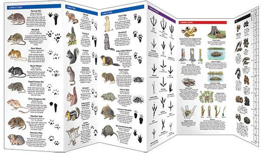 Guide book for animal tracks