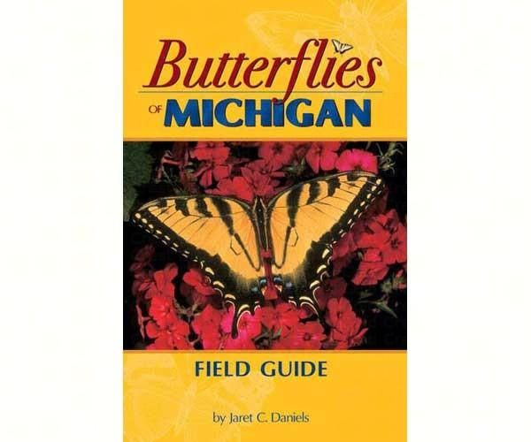 Butterflies Michigan Field Guide