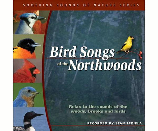 Birdsongs of Northwoods