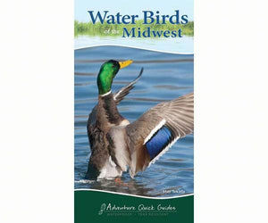 Water Birds of the Midwest guide