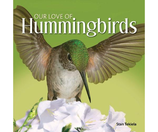 Our Love of Hummingbird