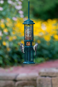 Squirrel Buster Nut Feeder