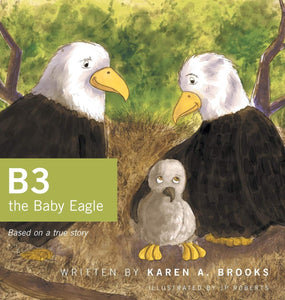 B3 the baby eagle book