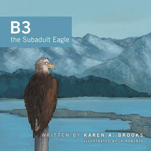 B3 the subadult eagle book