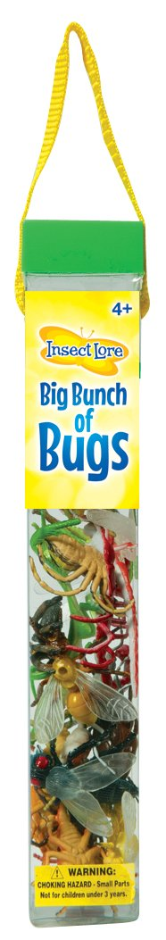 Insect Lore Big Bunch of Bugs