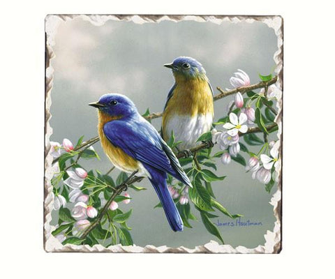 Bluebird Number 1 Single Tumbled Tile Coaster
