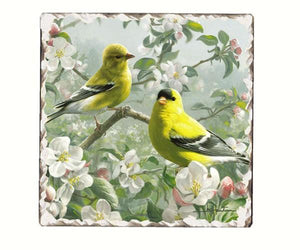 Goldfinches Number 1 Single Tumbled Tile Coaster