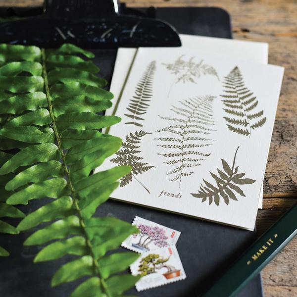 Fronds Cards - Boxed Set of 8