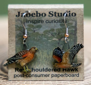 Jabebo Red-shouldered Hawk earrings