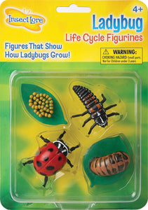 Insect Lore Lady Bug Life Cycle Figurines