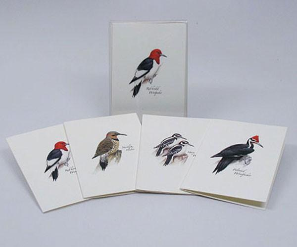 Woodpecker Notecard Assortment