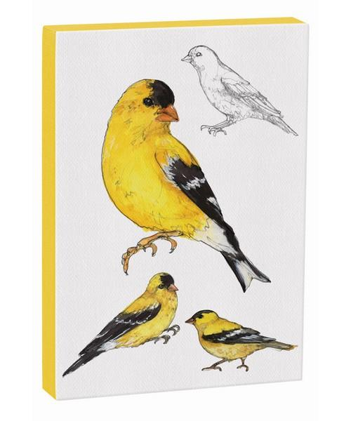 American Goldfinch 5x7 Canvas