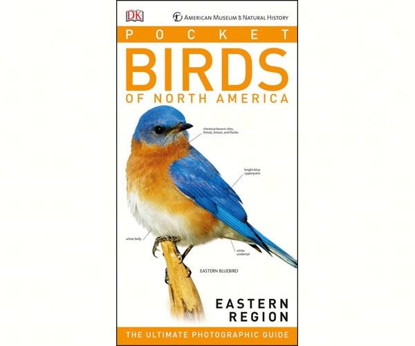 Pocket Birds of North America, Eastern Region