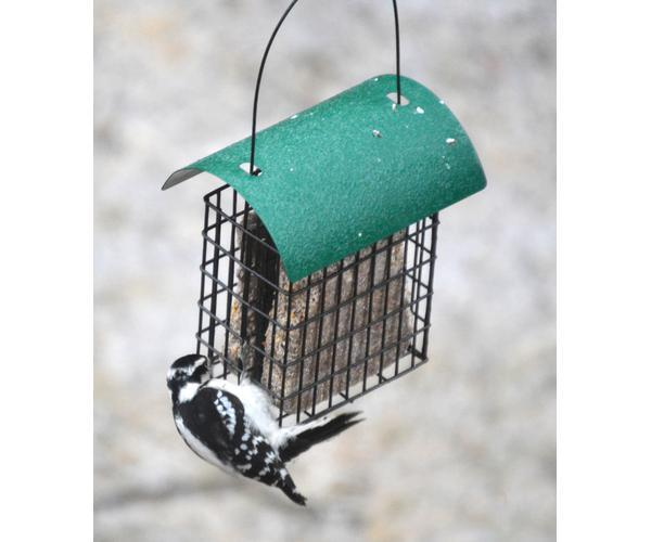 Deluxe Double Suet Cage with Green Metal Roof