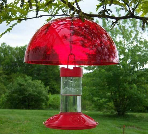 hummingbird feeder cover