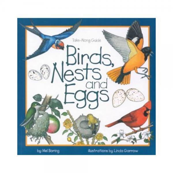 Birds Nests and Eggs book